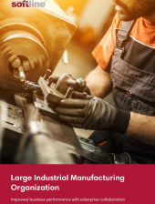 Large Industrial Manufacturing Organization